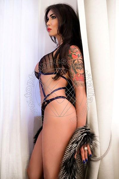 Kettley Lovato BOLOGNA 3688026519